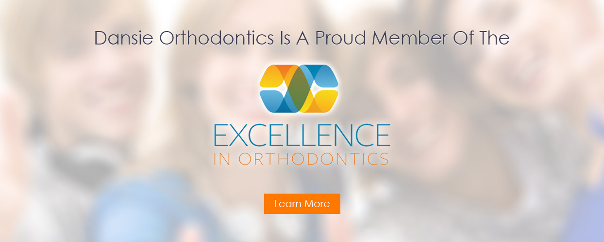excellence in orthodontics dansie
