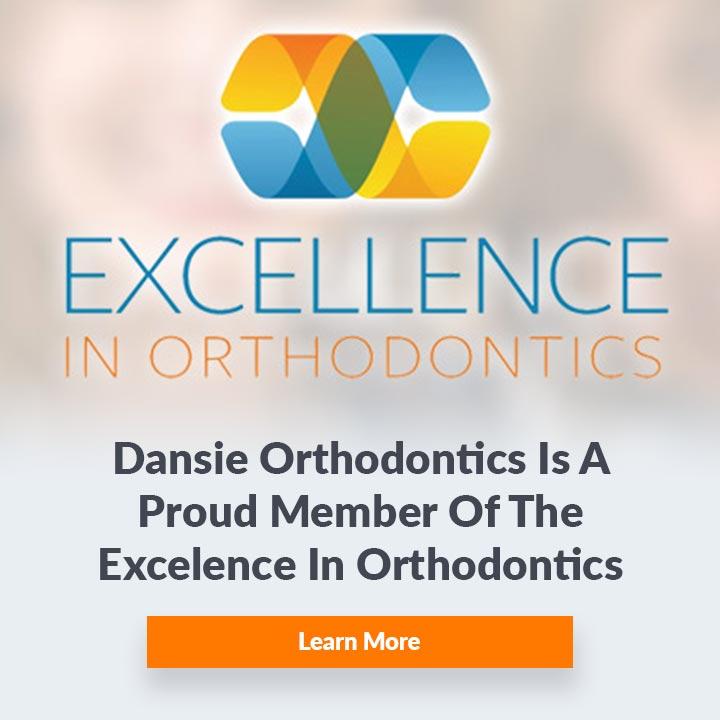 excellence in orthodontics dansie
